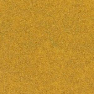 Expoluxe Gold 5033
