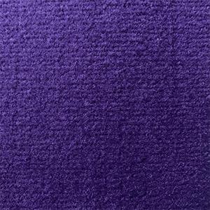Las Vegas purple 4717