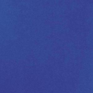 Revexpo bleu roi 1349