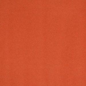 Salsa mandarin 1333