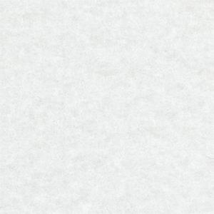 Expocolor white 0950